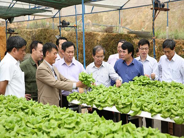 Khuyến khích nông dân xây dựng nền nông nghiệp hiện đại