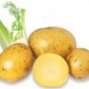 Lưu ý khi chế biến khoai tây, tránh gây hại đến sức khỏe