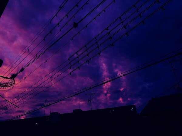 Giấc mơ thấy màu tím là điềm báo lành hay dữ?